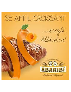 ABARIBI ALBICOCCA 16PZ